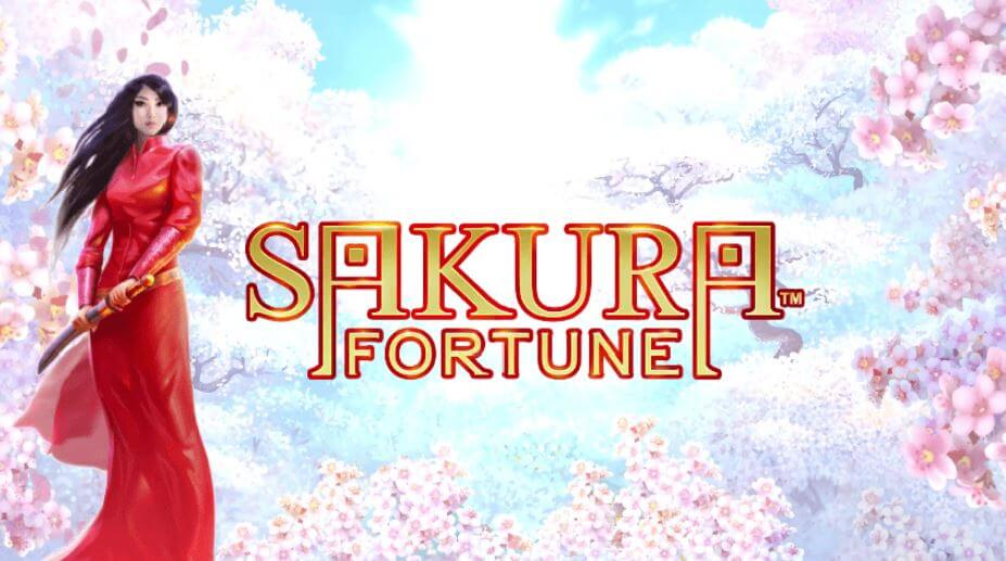 sakura fortune recension