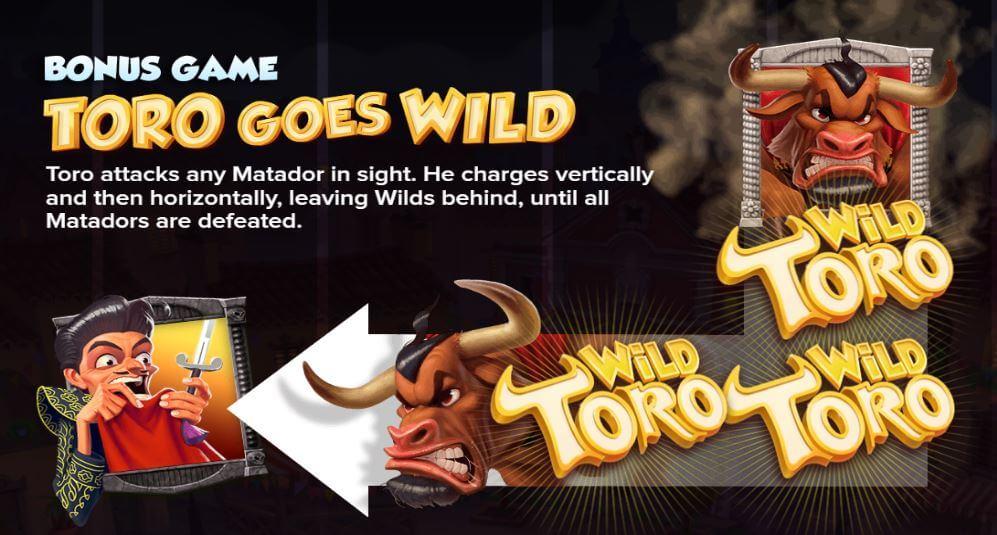 toro goes wild